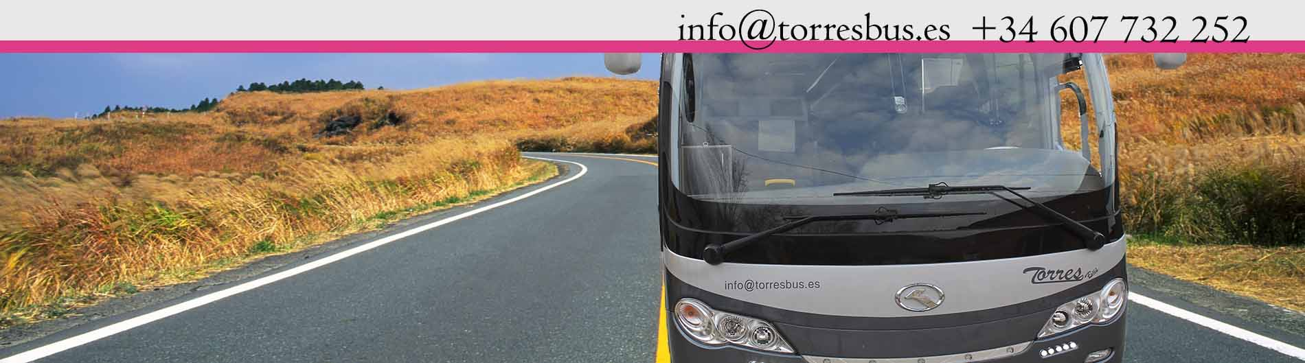 Alquiler de minibuses con conductor | Alquiler de un minibús