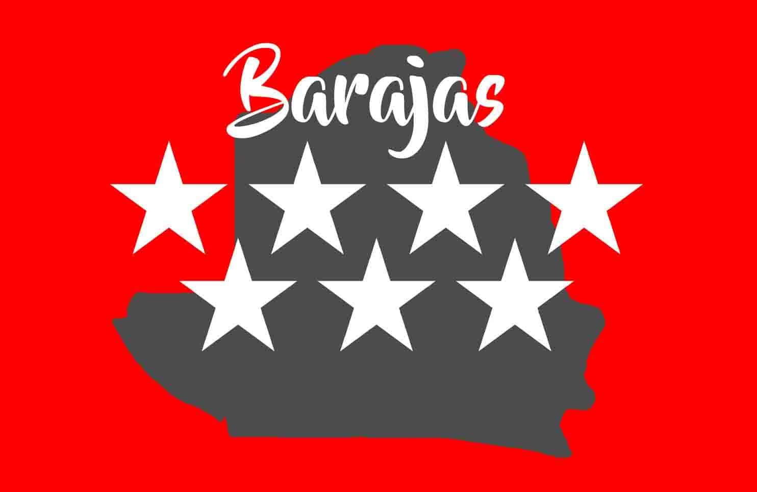 alquiler de autocares de 30 plazas microbus minibus madrid barajas